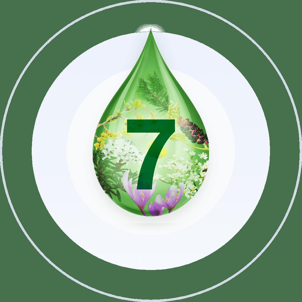 Tropfen, 7-fach-komplex